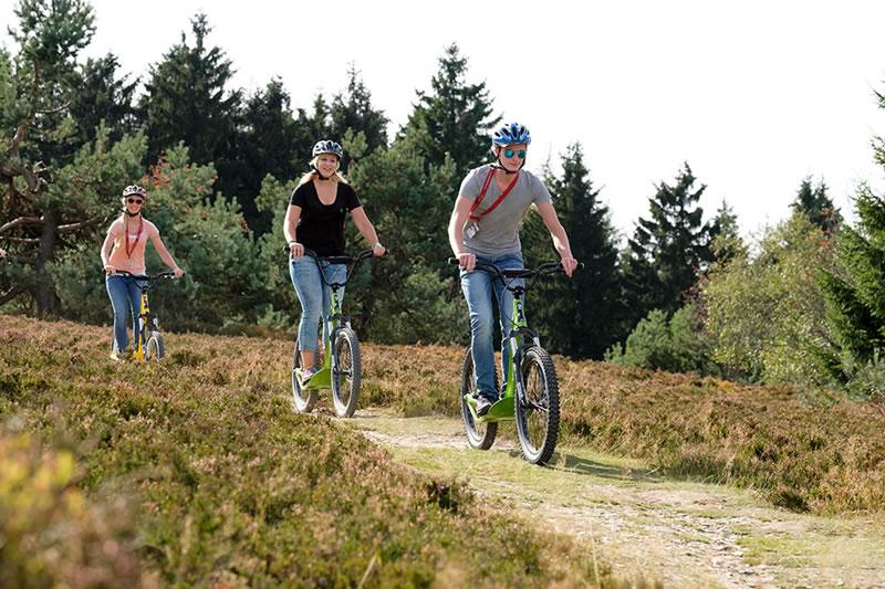 Biken am Ettelsberg