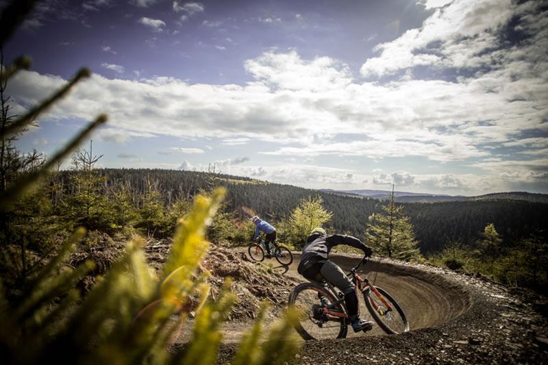 Bikepark Willingen Flow Trail