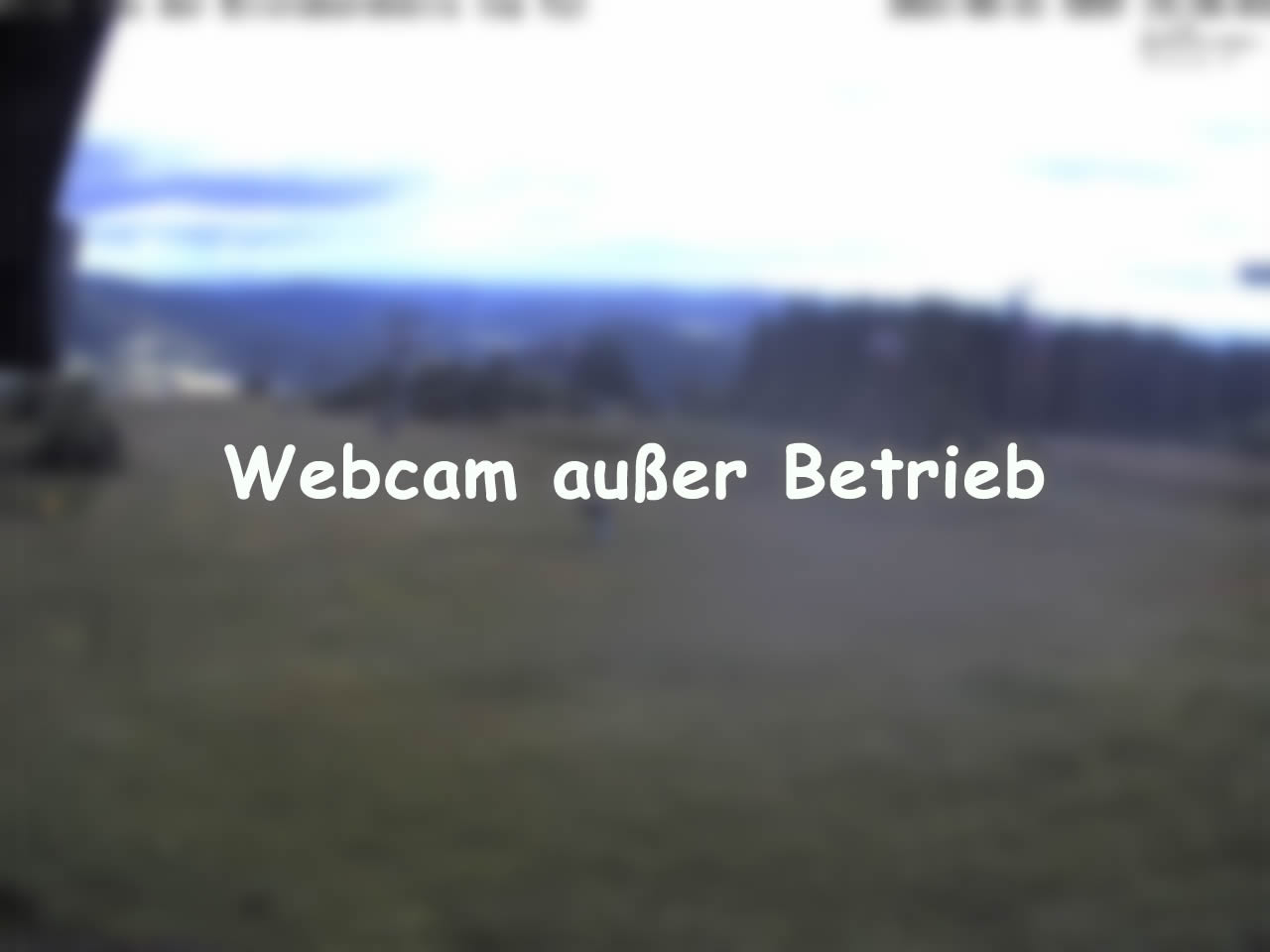 Webcam Brilon-Wald